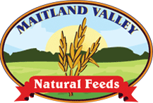 Maitland Valley Natural Feeds